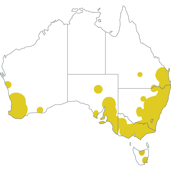 Map Of Australia To Buy.About Australian Extra Virgin Olive Oil